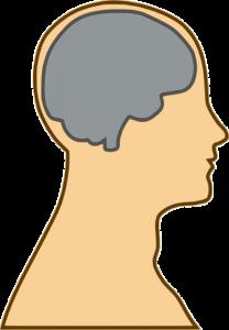 brain-154297_640 (2)
